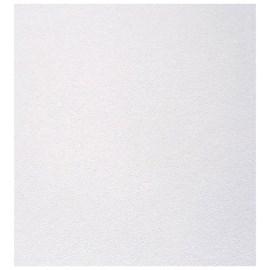 Forro E-Clean Gesso PVC Liso EspaçoForro Branco 625 x 625 x 8mm